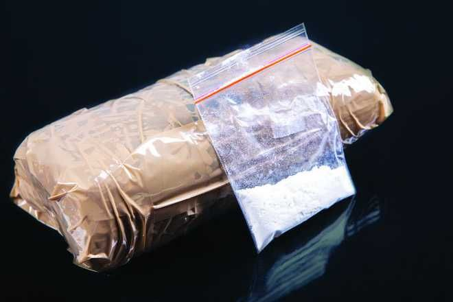 Banned substance seized